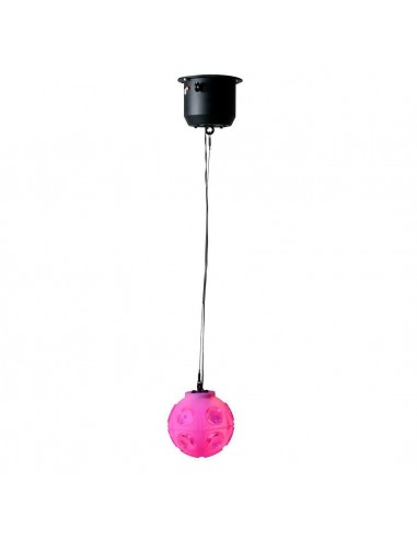 Jelly Globe